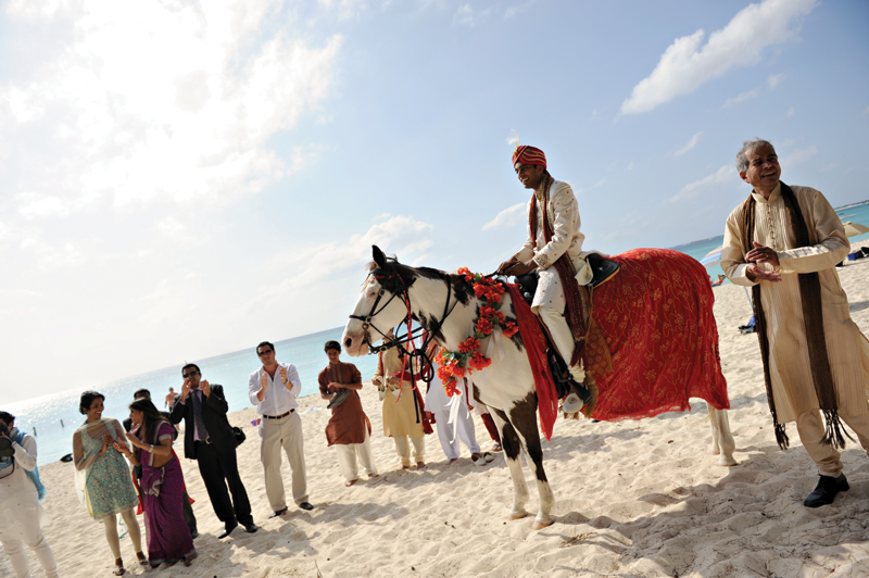 Groom sitting on the horse